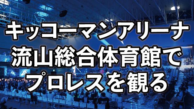 キッコーマンアリーナ(流山市立総合体育館)の座席を解説。初めてのプロレス観戦!