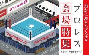 Pro-wrestling venue
