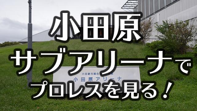 小田原アリーナ(サブアリーナ)でプロレスを見る!座席・アクセスを紹介