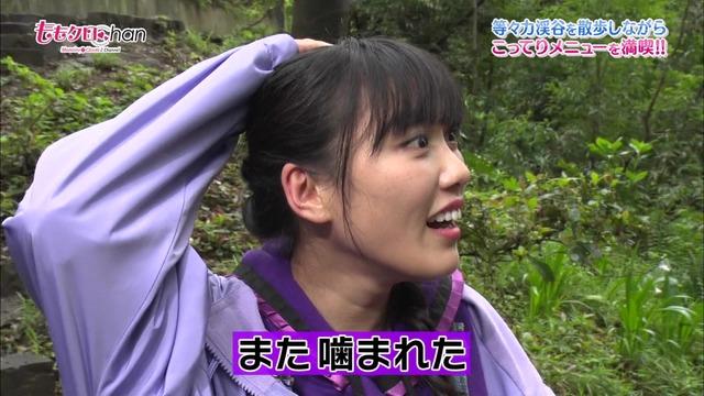 等々力渓谷に飯塚さんの良心を探しに行ってきた!